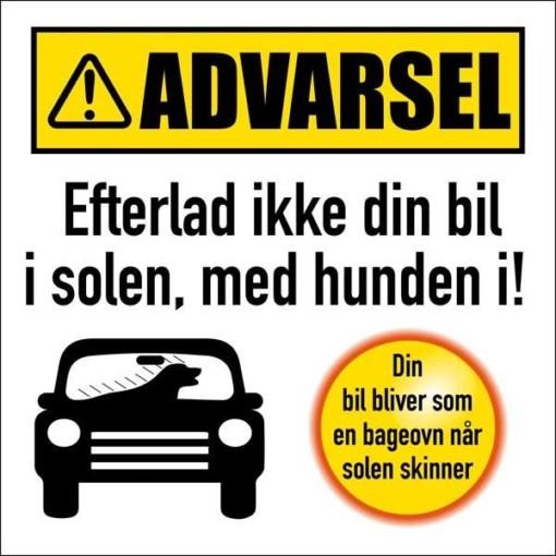 Advarsel Efterlad ikke din bil i solen med hunden i. Advarselsskilt