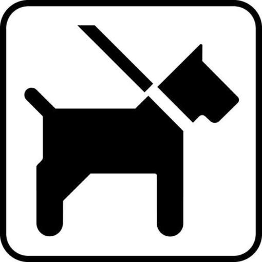 Hund i snor. Piktogram skilt