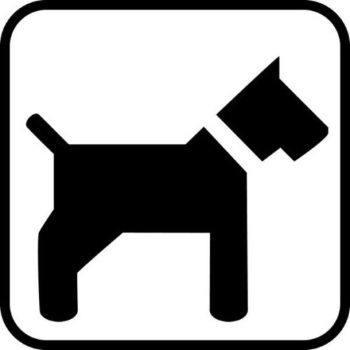 Hund uden snor - piktogram skilt