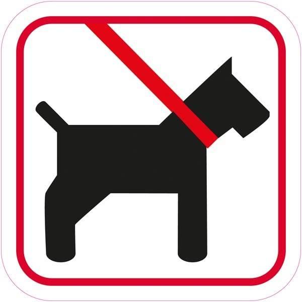 Hund i snor piktogram skilt