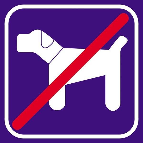 Hund violet forbudt - piktogram skilt