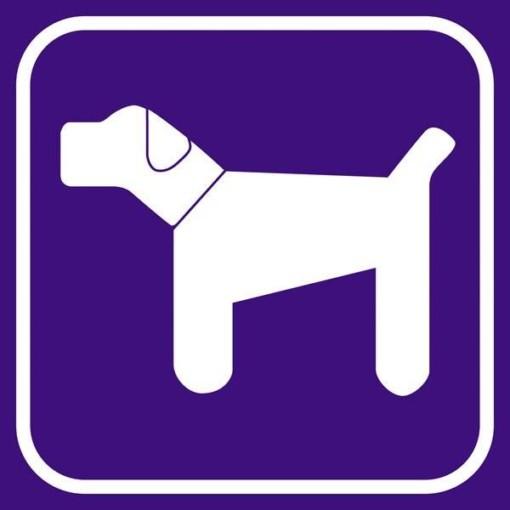 Hund violet - piktogram skilt
