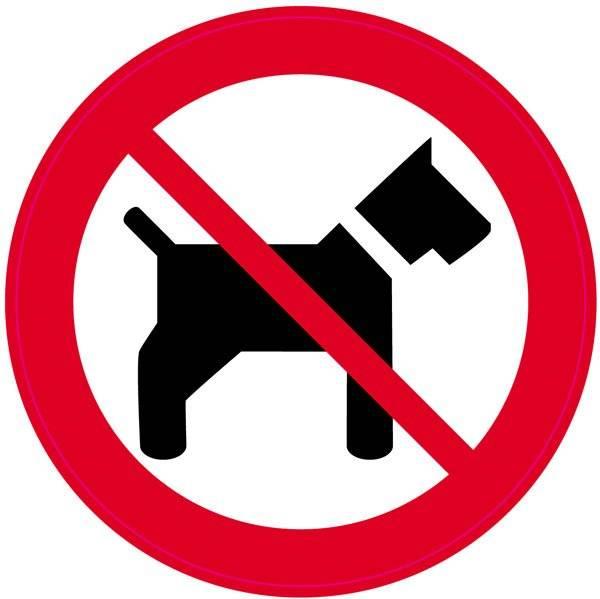 Hund forbud. Skilt