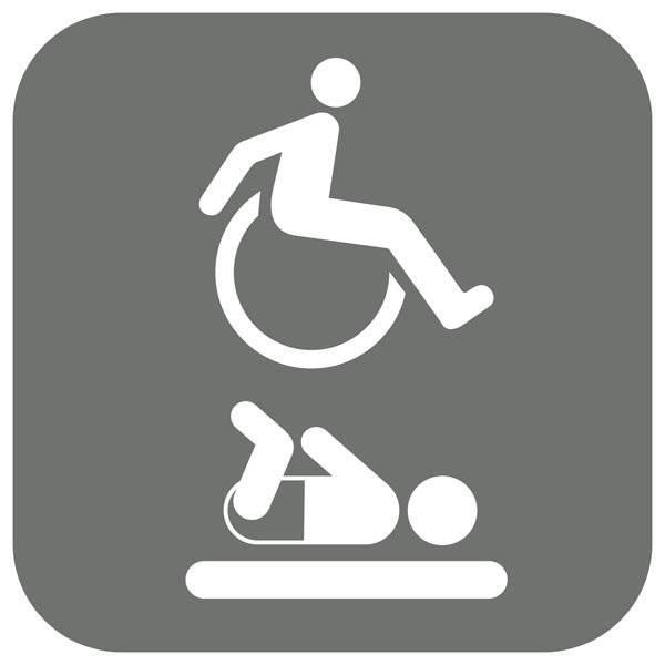 Handicap Pusleplads. Piktogram skilt