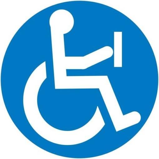 Handicap-knap skilt