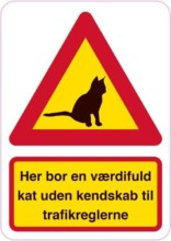 Her bor en værdifuld kat uden kendskab til trafikreglerne. Katte skilt