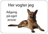 Schæferhund. Her vogter jeg