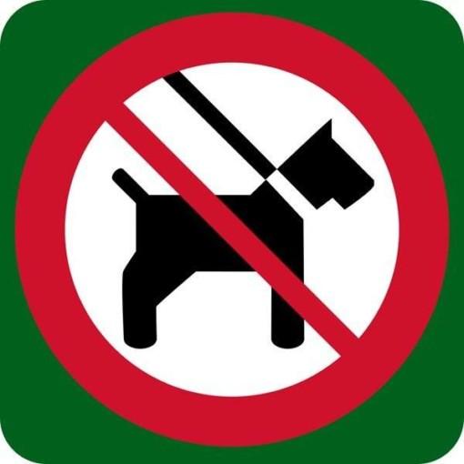 Hund forbudt skilt