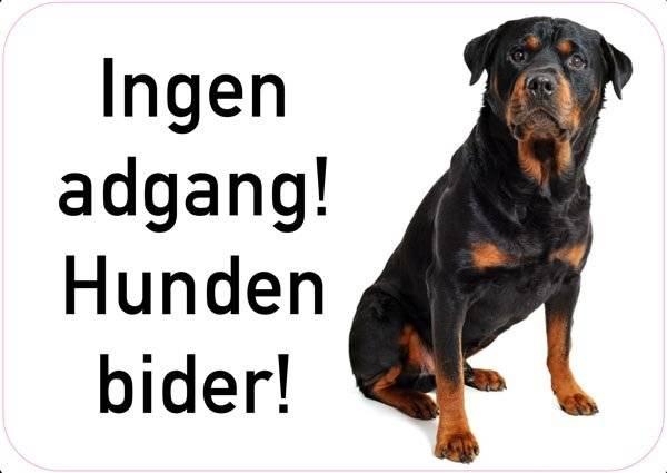 Ingen adgang! Hunden bider! Hunde skilt